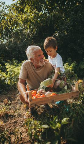 Grand Father Farming